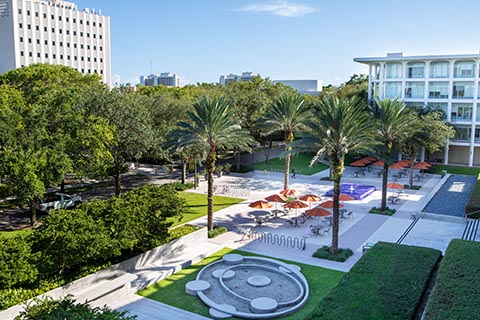University Of Miami Calendar Fall 2021 Undergraduate Admission | University of Miami