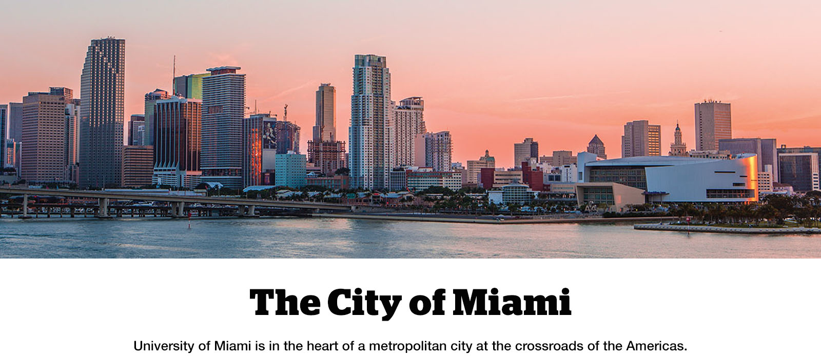 University of Miami is in the heart of a metropolitan city at the crossroads of the Americas.